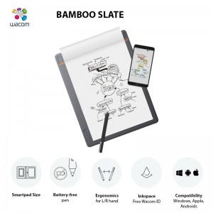 Bamboo slate Features